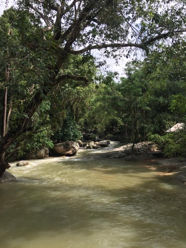 Zong Rave, Koh Samui, Thailand